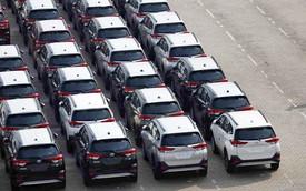 Gần 4.000 ô tô nhập khẩu về Việt Nam trong một tuần: Thêm nhiều xe con giá rẻ