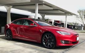 Bật chế độ Autopilot rồi ngủ, lái xe Tesla bị cảnh sát tóm gọn