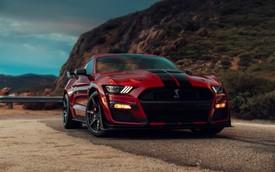 Ford Shelby GT500 2020 - 'Ngựa hoang' Mustang nhanh nhất, mạnh mẽ nhất ra mắt