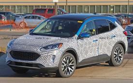 Lộ ảnh nóng Ford Escape 2020 ra mắt cuối năm nay