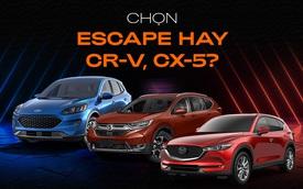 'Chuột bạch' Ford Escape hay an toàn chọn Honda CR-V và Mazda CX-5: Bài toán khó cho khách Việt thích xe gầm cao
