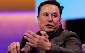 Cựu nhân viên Tesla tiết lộ đời sướng khổ ra sao khi làm việc dưới trướng Elon Musk