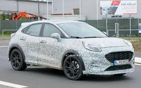 Ford bắt đầu chạy thử SUV cỡ nhỏ Puma ST, bỏ ngỏ khả năng thay thế EcoSport