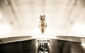 Cú vàng, mắt kim cương thay Spirit of Ecstasy, đắt hơn cả Rolls-Royce Phantom VIII