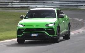 Lamborghini chuẩn bị Urus đặc biệt đấu Bentley Bentayga Speed