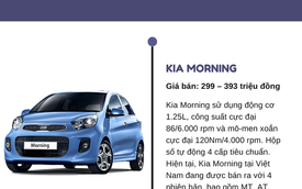 Top 5 xe ô tô giá rẻ nhất Việt Nam hiện nay, giá chỉ từ 300 triệu