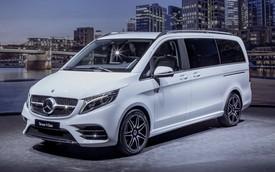Ra mắt Mercedes-Benz V-Class 2020: Hiệu quả hơn, sang hơn bao giờ hết
