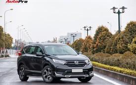 Cuồng xe chạy Tết đảo lộn top 10 xe bán chạy tháng 1/2019: Phút huy hoàng hiếm hoi của Honda CR-V
