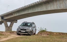 Đánh giá Subaru Forester 2019: Lái 'phê', làm hành khách cũng mê
