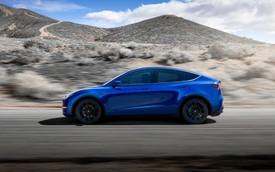Tesla Model Y chính thức ra mắt: Tham vọng dành khách của Honda CR-V, Hyundai Kona