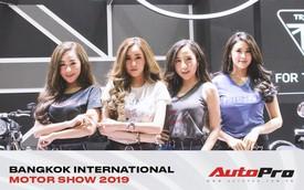 """Dàn """"bóng hồng"""" tỏa sáng tại Bangkok International Motor Show 2019"""
