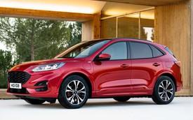 Ford chuẩn bị trình làng cấu hình off-road cho Escape ngay trong năm nay