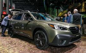 Subaru Outback 2020 trình làng: Công suất mới, thiết kế cũ
