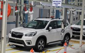 Nhập xe Thái Lan - Chương sử mới của Subaru Việt Nam