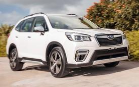 Subaru Forester 2019 sắp giảm giá hàng trăm triệu đồng, tạo thách thức lên Mazda CX-5 và Honda CR-V
