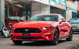 'Mục sở thị' xe cơ bắp Mỹ Ford Mustang Ecoboost Premium 2019 giá hơn 3,1 tỷ đồng đầu tiên về Việt Nam