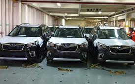 Lộ thông số chi tiết các phiên bản Subaru Forester 2019 đang đổ xô về Việt Nam, cạnh tranh Honda CR-V