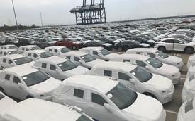 Hải quan TPHCM: Ô tô nhập khẩu tăng cao, tăng thu 4.000 tỷ đồng