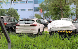 Hyundai Tucson và Elantra 2019 đã được kiểm định, lộ những điểm mới, chuẩn bị đến tay khách Việt