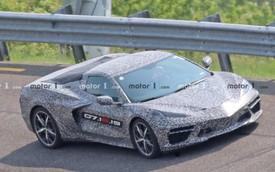 GM chia sẻ tin làm tan nát cõi lòng người hâm mộ Chevrolet Corvette