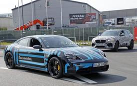 Porsche Taycan thử nghiệm lần cuối, bộ cánh lạ lẫm gây tò mò