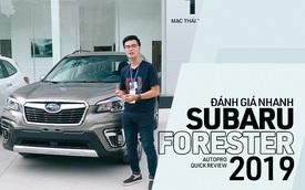 Đánh giá nhanh Subaru Forester 2019: Le lói cơ hội trước Honda CR-V và Mazda CX-5