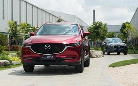Mazda CX-5 bản nâng cấp chuẩn bị ra mắt Việt Nam, quyết giành lại ngôi vương từ Honda CR-V