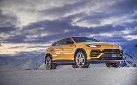 Vay mượn mỗi xe một ít, liệu Urus có bao nhiêu phần trăm chất 'bò' Lamborghini thực sự?