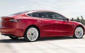 Tesla mất hợp đồng triệu USD vì chất lượng xe quá kém