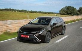 Toyota sắp có Ciaz, Ertiga riêng nhờ bắt tay Suzuki
