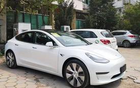 VinFast, Mitsubishi và Tesla rộng cửa đưa xe điện 'giá rẻ' về Việt Nam