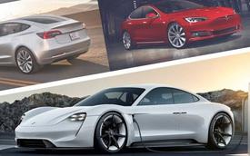 Nghịch lý Tesla: Sản xuất xe 'xanh' nhưng lại chặt rừng xây nhà máy