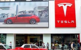Theo Elon Musk, cứ mua xe Tesla là bạn sẽ thu về hơn 700 triệu VNĐ/năm mà chẳng cần làm gì cả