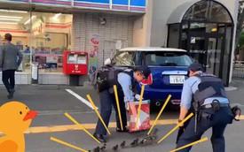 Chỉ có ở Nhật Bản: Mẹ con nhà vịt được cảnh sát hộ tống sang đường, thu hút đến 15 triệu lượt xem trên MXH