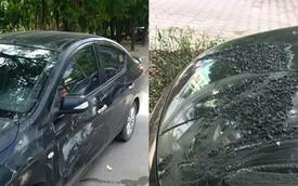 Xôn xao hình ảnh ô tô bị đổ chất lạ và cào nham nhở sau một đêm ở Hà Nội