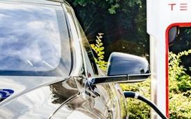 Mọi người đang bắt đầu mua xe điện với cùng một lý do như khi mua những chiếc xe chạy xăng truyền thống