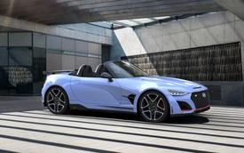 Có cựu giám đốc BMW, Hyundai tự tin: 'Đã tới lúc cạnh tranh Porsche'