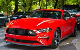 Ford Mustang High Performance kỷ niệm 55 năm hàng độc lăn bánh ra phố, kính lái tiết lộ tình trạng xe