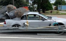 Khi bạn chạy Ford Mustang nhưng dòng đời đưa đẩy làm... thu mua sắt vụn