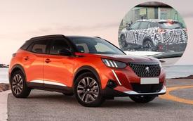 Peugeot 2008 lộ chạy thử tại Việt Nam - SUV Pháp do THACO lắp ráp sắp ra mắt, đối thủ Kia Seltos, Hyundai Kona