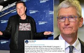 Elon Musk muốn Apple mua Tesla ở mức 60 tỷ USD, Tim Cook không buồn đáp trả