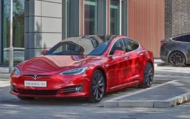 Thấy bóng hình Apple trong Tesla, người dùng bắt đầu lo sợ về động thái tương lai của hãng xe này