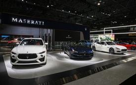 Maserati sắp tung SUV hoàn toàn mới, đối đầu Mercedes-Benz GLC, tự tin đi trước đối thủ nhờ điều này
