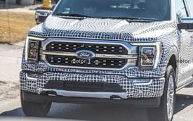 Ford F-150 đời mới lộ mặt, nhiều khả năng ra mắt trong hè 2020