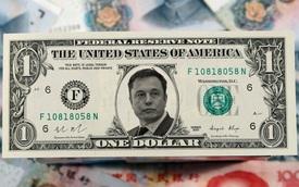 Có thể bạn không thích xe Tesla nhưng điều này sẽ khiến bạn giàu gấp 40 lần nhờ họ