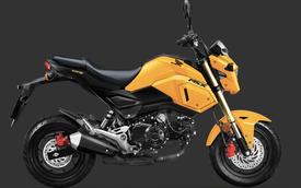 Honda MSX 125cc thay màu mới tại Việt Nam, giữ giá 50 triệu đồng