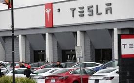 Cách Tesla lãi giữa mùa dịch: Không hẳn do bán xe mà do chính đối thủ mang tiền tới nộp