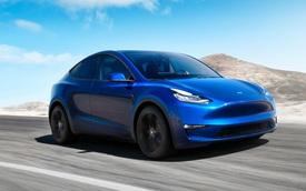 Tesla lại bị chỉ trích thậm tệ vì chất lượng sản phẩm mới