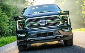 Ford F-150 thế hệ mới biến hoá 11 sắc thái chỉ nhờ thay đúng 1 chi tiết