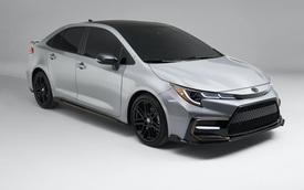 Honda Civic có Type R thì giờ Toyota Corolla có Apex Edition